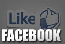 2012_icon_facebook